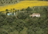 Villa Rosaspina surrounded by its pool,sunflowers,olive & oak trees